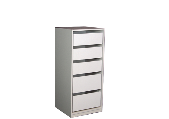 ROBE/STORAGE INSERT - 5 DRAWER